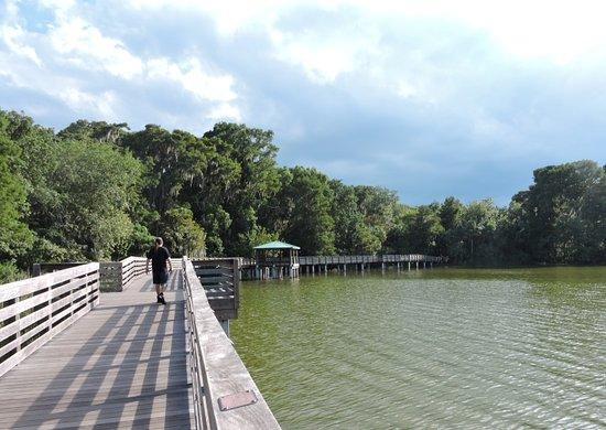 Mount Dora, FL: The boardwalk of Palm Island Park