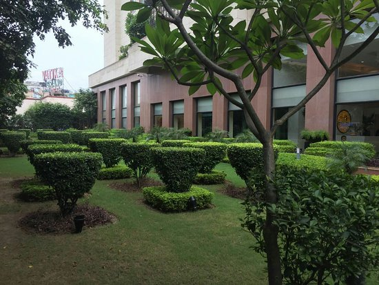 Lemon Tree Premier, Leisure Valley, Gurgaon: IMG-20160825-WA0001_large.jpg