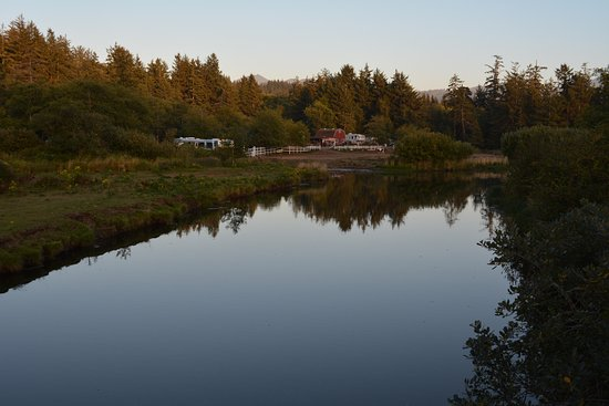 Sea Ranch RV Park & Stables: Looking across to stable area, sites are secluded from the road.