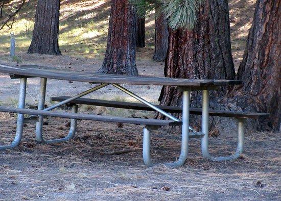 Picnic Table, Day Use Area, La Pine State Park, Le Pine, Oregon