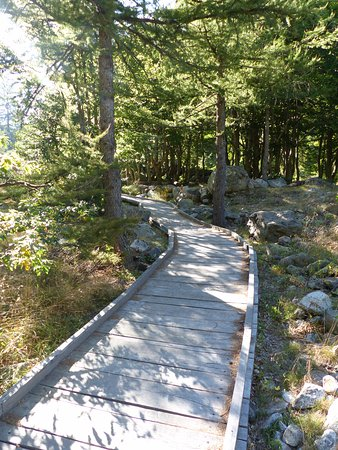 Valdieri, Италия: Sentiero di accesso