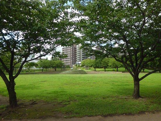 Wakabadai Park