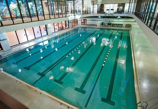 Edina, MN: Edinborough Indoor Pool
