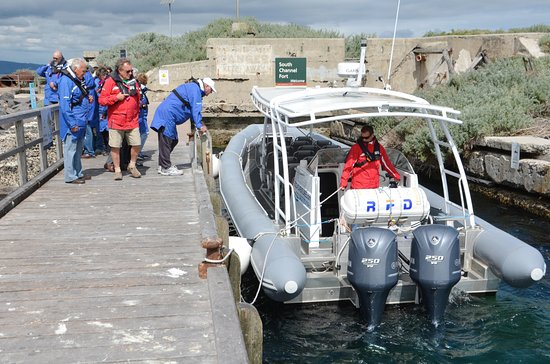 Queenscliff, Australia: Arrival with Sth Bay Eco Tours