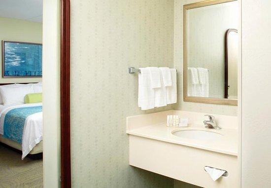 Washington, Pensilvania: Suite Bathroom