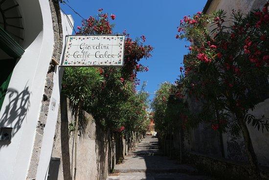 Giardini CaffeCalce Photo