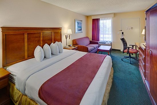 Stay Inn West Palm Beach Airport: King Study Accommodation