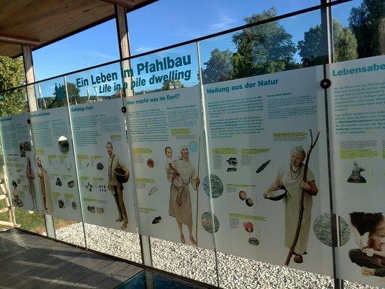 Pfahlbau Pavillon Seewalchen am Attersee