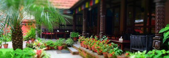Hotel Horizon: Garden