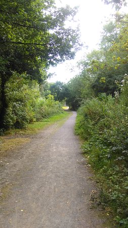 Basildon, UK: Relaxing Woodland Walks