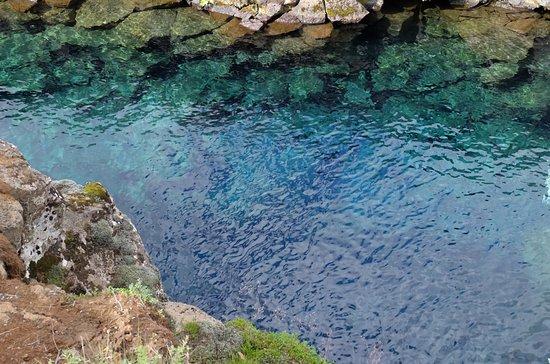 Thingvellir, ไอซ์แลนด์: Разлом Silfra
