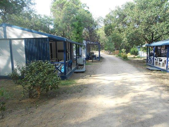 """Domaine Residentiel """"Eucalyptus Park"""" : les logements"""