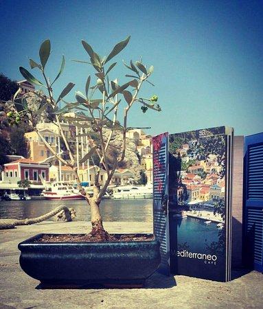 Mediterraneo Cafe