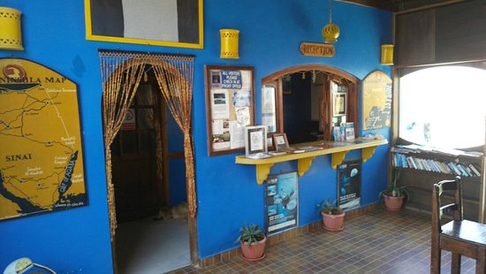 Ghazala Hotel: IMG_20160825_121714_large.jpg
