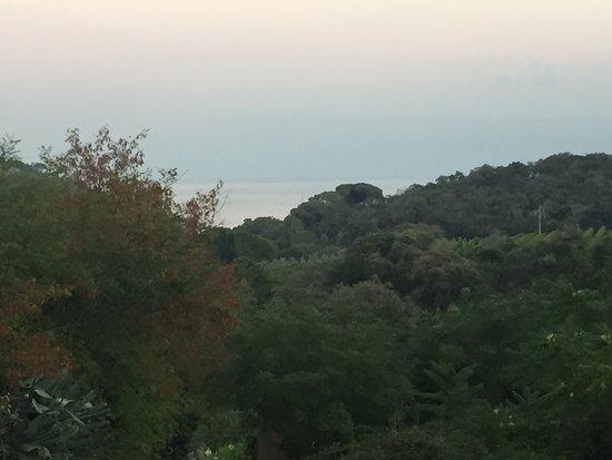 Agriturismo del Monte - Podere Galletti: photo0.jpg