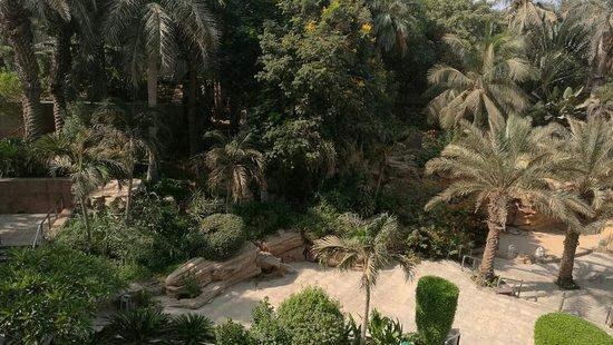 Jeddah Hilton Hotel: هيلتون جده