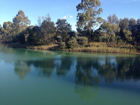Nuriootpa, Australie : Cute place. Nice outdoor deck. Turtles in the pond. Quiet. Not much ambience. Lots of taste test