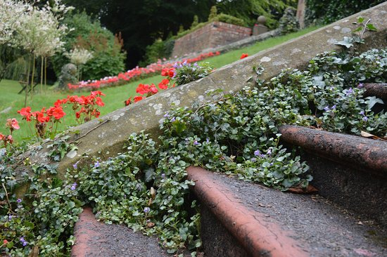 Cragside House And Gardens: Pretty Gardens