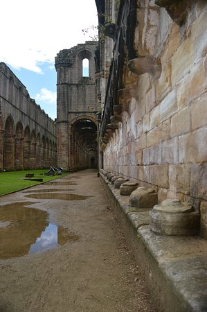 Fountains Abbey and Studley Royal Water Garden: the odd puddle