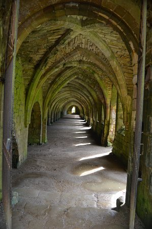 Fountains Abbey and Studley Royal Water Garden: intresting views