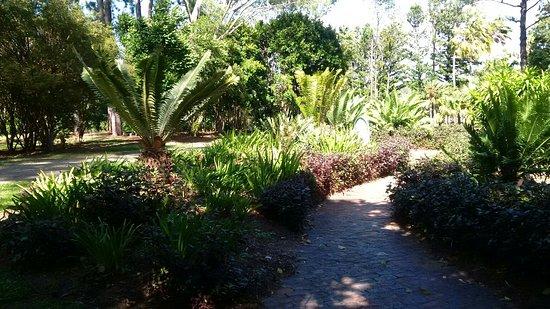 Rockhampton Botanik Bahçeleri ve Hayvanat Bahçesi: Rockhampton Botanic Gardens