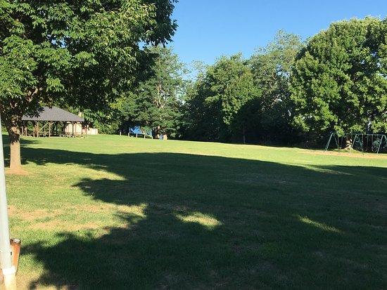 Webster Park