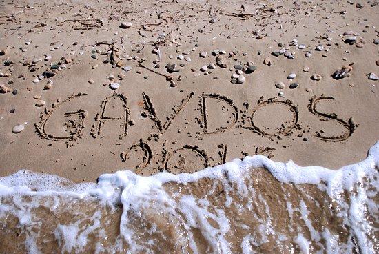 Gavdos, Griechenland: Ricordo...
