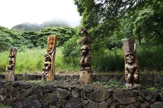 カネオヘ, ハワイ, ジャングルクルーズ途中