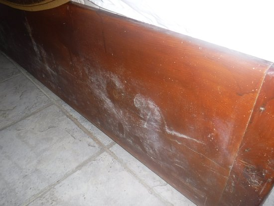 Seyir Village Hotel : White mould on the bed, from the frame having water damage at some point - the smell was horrend