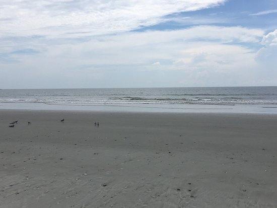 フォリービーチ Picture