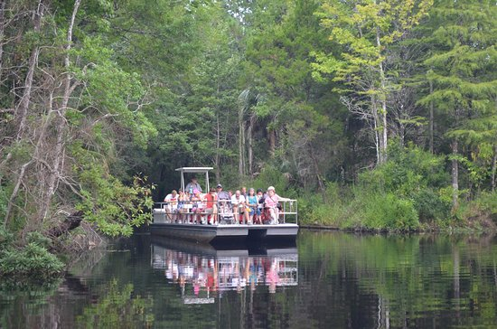 Homosassa Springs, FL: photo7.jpg
