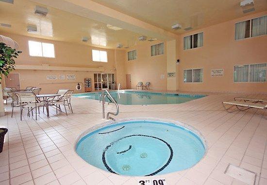 Fletcher, Северная Каролина: Indoor Hot Tub