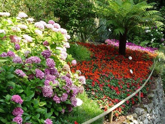 giardini fioriti parco cascata di varone foto di garda