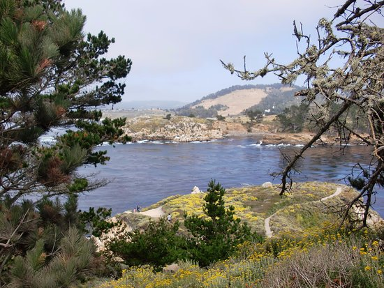 Point Lobos State Reserve: In the park