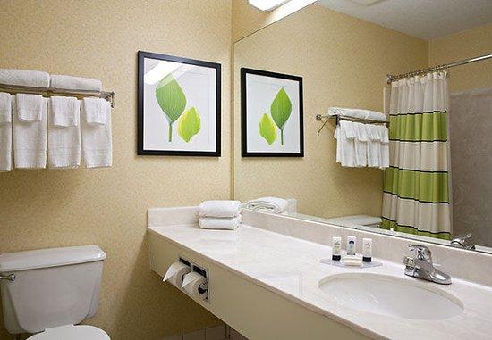 Saginaw, ميتشجان: Guest Bathroom