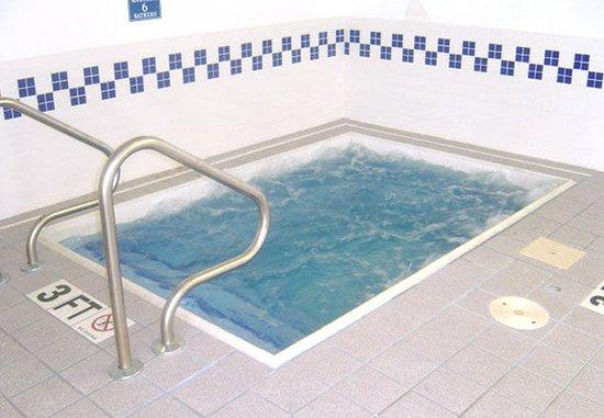 Saginaw, ميتشجان: Indoor Spa