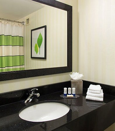 Webster, estado de Nueva York: Guest Bathroom