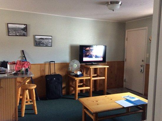 Healing Waters Resort & Spa : Living room