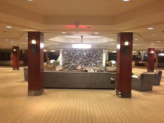 Hilton Chicago/Indian Lakes Resort : photo1.jpg