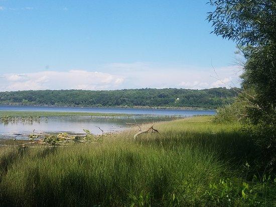 Saugerties, NY: Beautiful lowland river views along trail