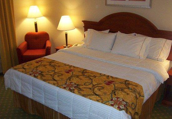 Farmington Hills, Мичиган: King Guest Room