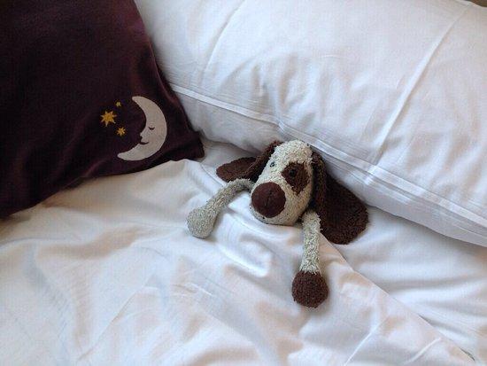 Premier Inn Brighton City Centre Hotel : Even the dog can sleep well