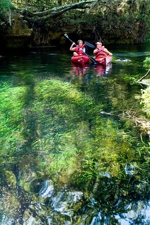Lake City, Φλόριντα: Ichetucknee Springs