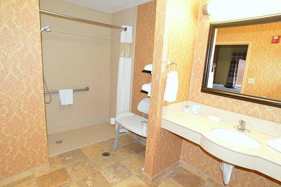 Lake City, FL: Accessible Suite Bathroom