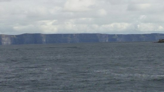 Doolin2Aran Ferries: Inis Oirr and Cliffs of Moher from the ferry