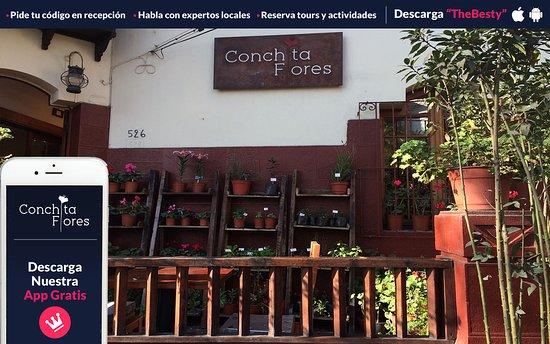 B&B Conchita Flores: Terraza exterior en la entrada