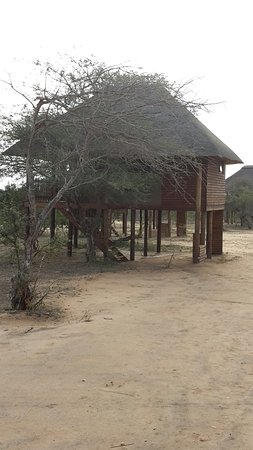 nThambo Tree Camp: 20160823_160505_large.jpg