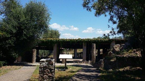 Ansedonia, Ιταλία: 20160606_122217_large.jpg