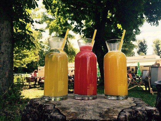 Kranj, Slovenya: Flavored 100% natural lemonade