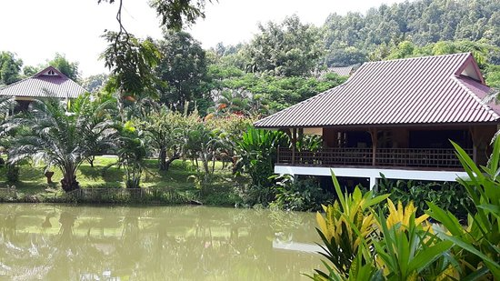 Maekok River Village Resort: 20160821_145217_large.jpg